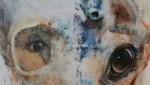 SymbioticArt by Sally Linder