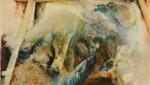 CanaryArt by Sally Linder